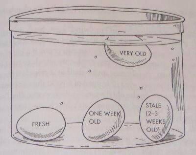 eggfloattest
